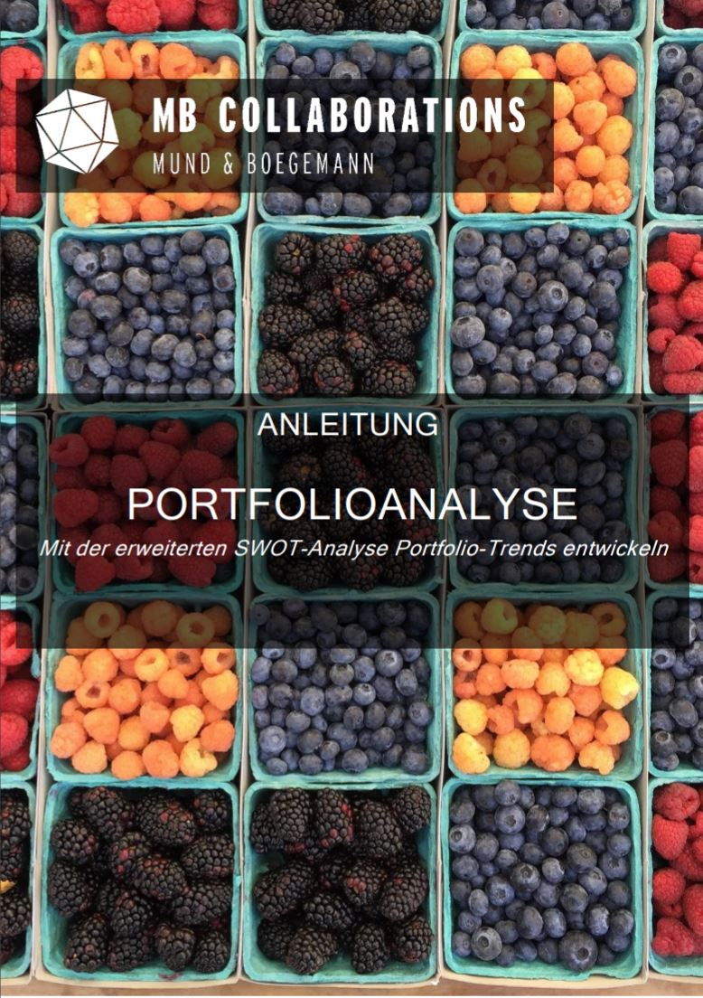 Cover_Anleitung_SWOT